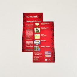 DL 170gsm Silk Leaflets